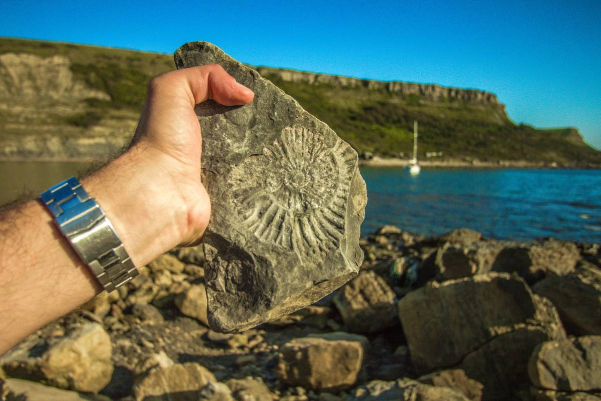 five places for a fossil-hunting adventure